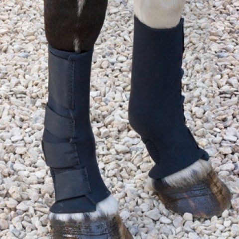 Shires Mud Fever Socks