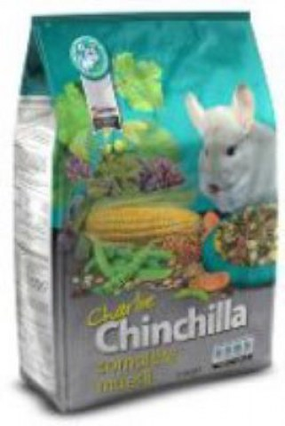 charlie-chinchilla-2500