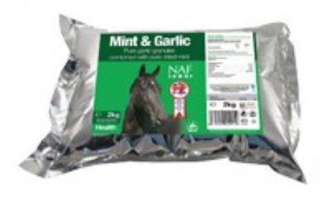 mint-&-garlic2